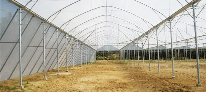 Agro Capital Management introducing to its clients a new supplier of greenhouses Adama-Consalt.